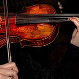 Concerts in San Miguel de Allende, Guanajuato, Mexico - January 18 & 20, 2019 - 1